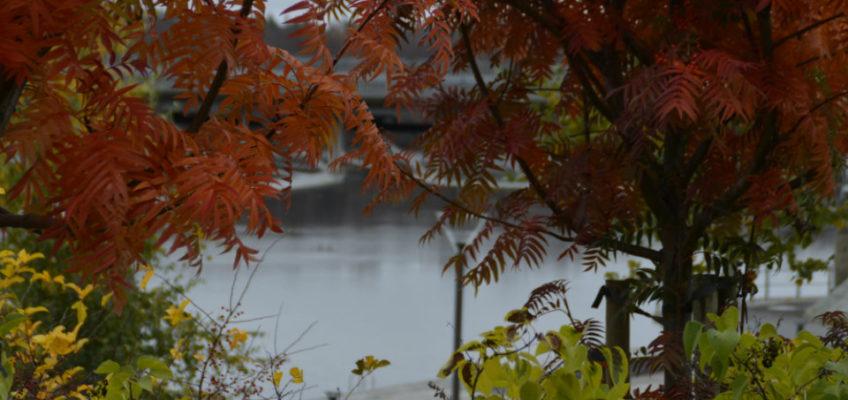Hösten närmar sig….